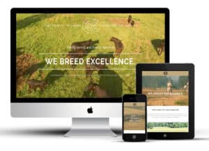 Focus Marketing Group | Your Complete Source for Livestock Marketing | Livestock Responsive Web Design and Development for Lake Majestik Farms